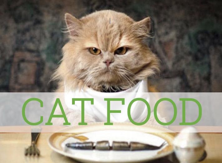 Cat food information from Dr Ellen Kinzl veterinarian