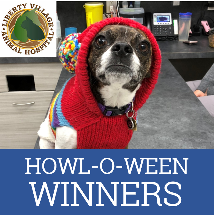 Veterinarian Ellen Kinzl on Howloween contest winners