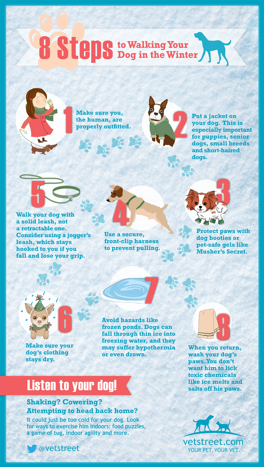 Liberty Village Animal Hospital tips for winter dogs