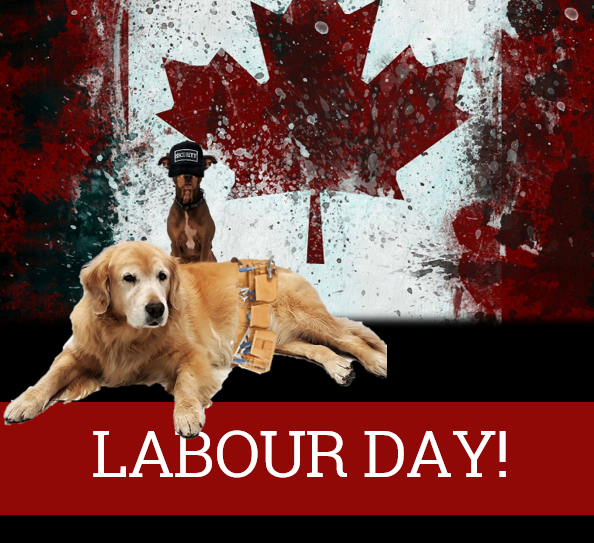 Labour Day 2019 Liberty Village Animal Hospital